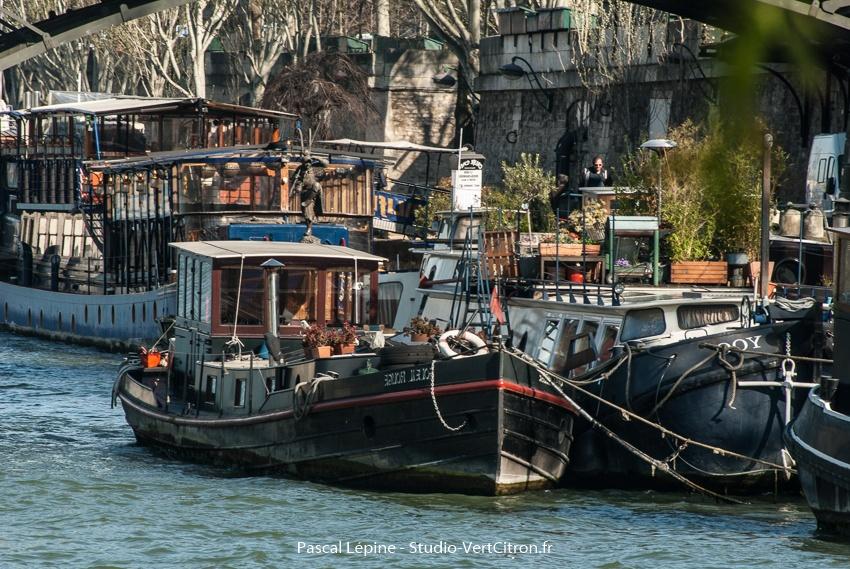Pénche sur la Seine à Paris - Mars 2014
