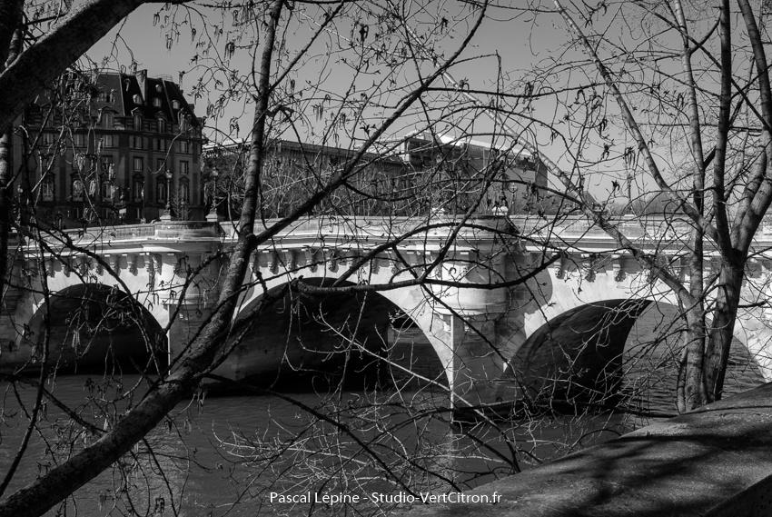 Le Pont Neuf à Paris en Mars 2014